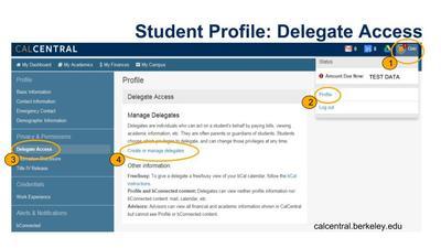CalCentral Delegate Access Screenshot